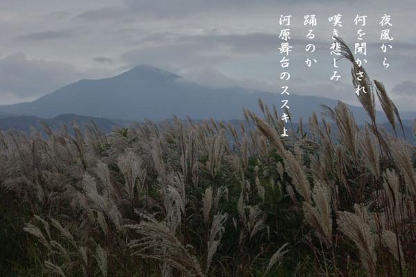 IMGP4698.jpgのサムネール画像