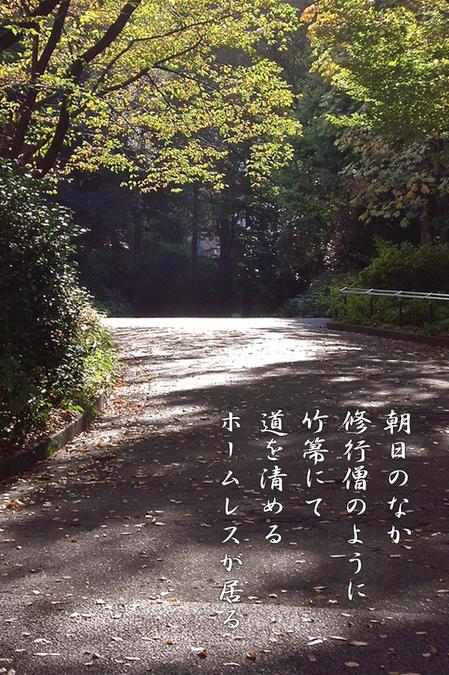 IMGP4980_.jpg