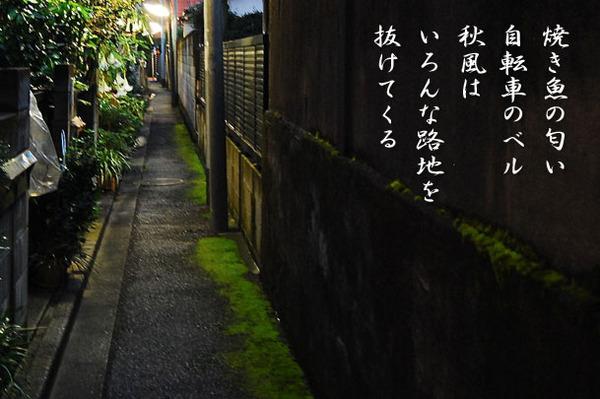 路地_DSC_0038.JPG.jpg