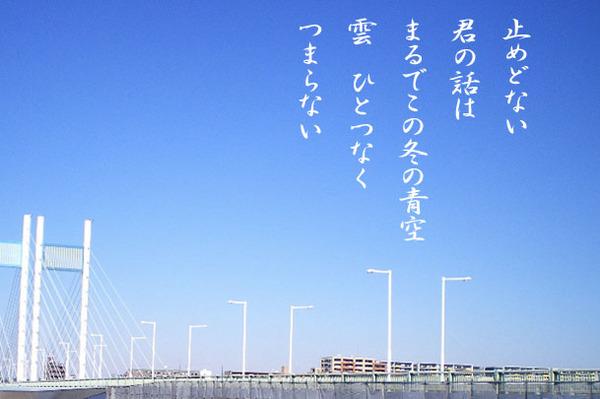 冬の青空_IMGP4474.jpg