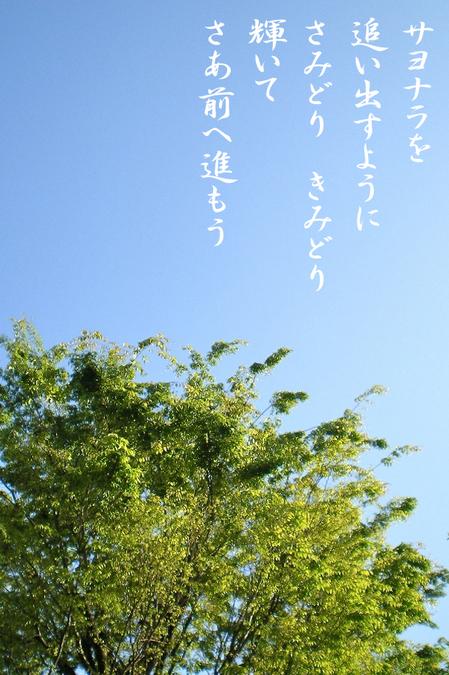 サヨナラを_5670.jpg
