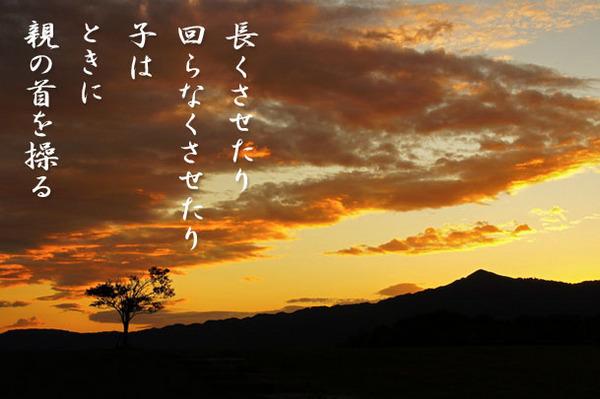 2013_11_親の首を操る.jpg