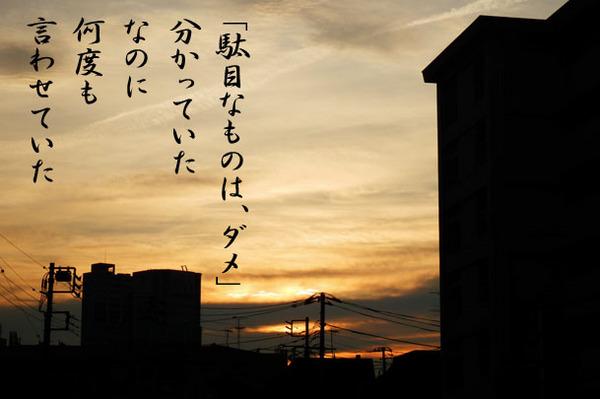 2013_12_駄目なものはダメ.jpg