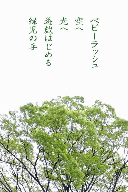 2014_05_ベビーラッシュ.jpg