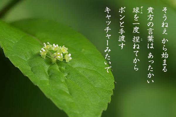 2015_05_そうねえ.jpg