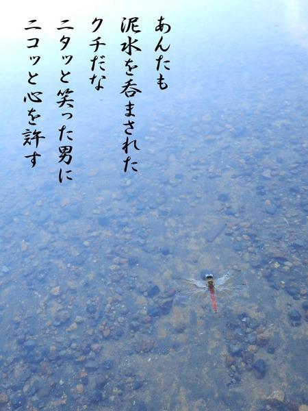 10月_泥水.jpg
