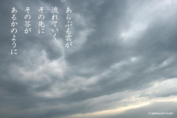 2016_01_あらぶる_p.jpg