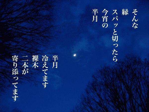 半月.jpg