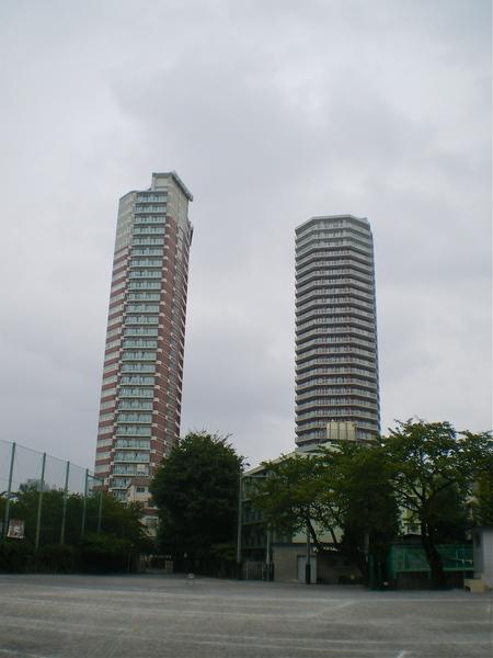 IMGP2004.JPG