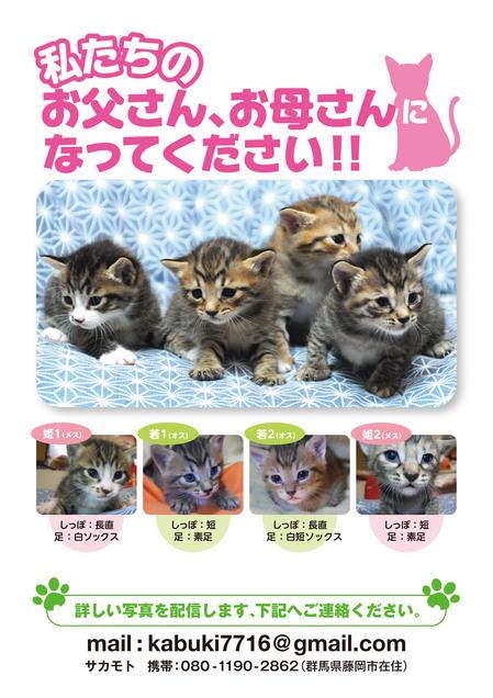 ねこポスター.jpg
