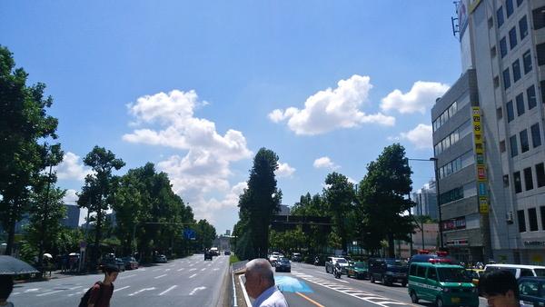夏ゆく.jpg