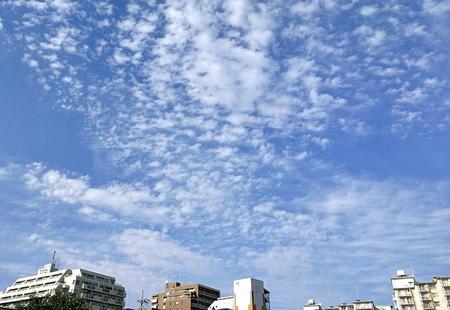 秋の風/2.jpg